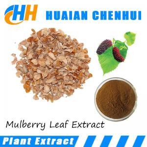 Quality Mulberry Leaf Extract , 1-Deoxynojirimycin, medicine good for heart 1%~5% DNJ 20 for sale