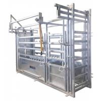 Wholesale Professional Hot DIP Galvanized Cattle Crush with Weighing Scale from china suppliers