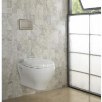 For modern bathrooms Timeless style Concealed cistern SoftMood Wall Hung WC With Seat And Cover and Wall Hung Bidet