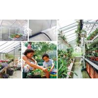 G-MORE Wholesales Wall Lean-To Series Aluminum Polycarbonate Hobby Greenhouse Detail.jpg