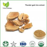 China lei gong teng powder extract,lei gong teng extract,tripterygium wilfordii extract for sale