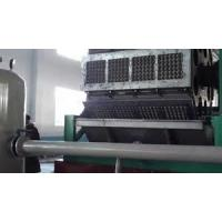 PLC Touch Screen Control Paper Egg Tray Machine , Egg Crate Making Machine