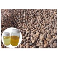 Wholesale Skin Moisturizing Natural Plant Extract Oil Camellia Tea Oil Cold Pressed Yellow Color from china suppliers