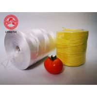 Wholesale UV Protection Colorful Agriculture PP Tomato Twine from china suppliers