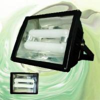 Wholesale Flood Light With Magnetic Induction Lamp (RZHL306) from china suppliers