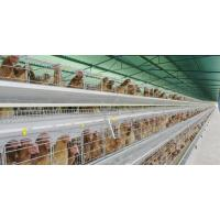 Wholesale Chicken farm nipple drinker from china suppliers
