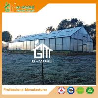 Wholesale Aluminum Greenhouse-Titan series-1406X506X302CM-Green/Black Color-10mm thick PC from china suppliers
