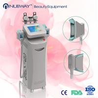 Wholesale fat dissolving cryolipolysis machine from china suppliers