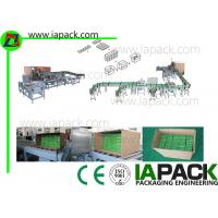 Horizontal Carton Wrapping Machine , Automatic Cartoning Machine