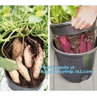 China Tomato Potato Carrot Onion Peanut Growing Pot Garden Planter Pot,PP potato grow pot planting bag, bagplastics, bagease on sale