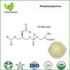 Buy cheap phosphatidylserine powder,8002-43-5,cas 8002-43-5,phosphatidylserine ps from wholesalers