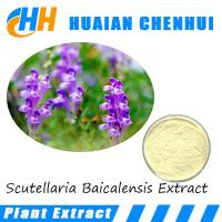 Wholesale Top Quality Natural Scutellaria P.E. /Scutellaria Baicalensis Extract /100% natural Baicalin powder from china suppliers