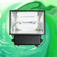 Wholesale Flood Light With Magnetic Induction Lamp (RZHL302) from china suppliers