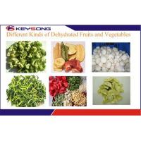 Quality Industrial Fruit and Vegetable Drying Machine Fruit Dehydrator for sale