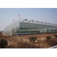 Wholesale Commercial Glass Greenhouse , Hydroponic Greenhouse With Climate Control System from china suppliers