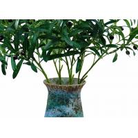 China Highly Simulated Decor Artificial Tree Branches , Plastic Tree Branches for sale