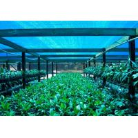 Best Greenhouse Shade Net ,Agricultural Shade Cloth For Flower Farm wholesale