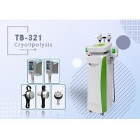 Best 2 Heads Cryo lipolysis Fat Freezing Cool Sculpting Fat Reduction Body Contouring Fat Frozen wholesale