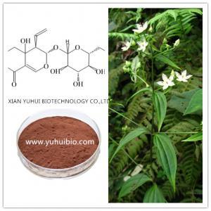 Wholesale Swertia Extract 98% Swertiamarin,Swertia Extract,swertia chirata extract from china suppliers