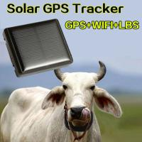 Wholesale Mini Solar Animal Gps Tracker , Real Time Animal Tracking Device For Cattle Horse Camel from china suppliers