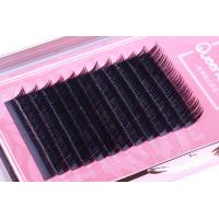 Wholesale PBT Camellia Eyelash Extension , 3D Semi Permanent Eyelashes Multi Lengths Each Row from china suppliers
