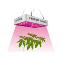 Wholesale 1000 Watt Full Spectrum LED Grow Lights For Indoor Hydroponics Plants from china suppliers