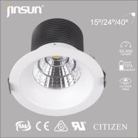 20W/30W with CE ROHS certification COB LED Downlight SAA approval with CITIZEN COB