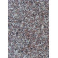Beautiful Granite Stone Floor Tiles G664 Cherry Red Stone For Paving / Worktop for sale