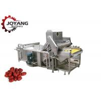 China Multifunction Agricultural Food Washing Microwave Jujube Washing Equipment on sale