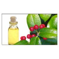 China Wintergreen oil for pain relief, Wintergreen Oil in Aromatherapy for Natural and Homeopathic Remedies on sale
