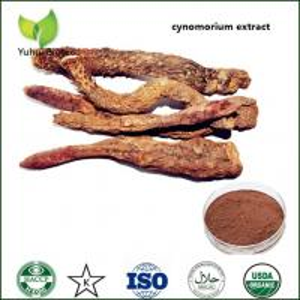 Wholesale Songaria Cynomorium Herb powder,Cynomorium Songaria Extract,cynomorium extract from china suppliers