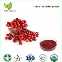 Wholesale cranberry extract proanthocyanidins,cranberry fruit powder,dried cranberry extract powder from china suppliers