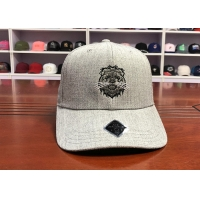 Wholesale Hot Sales ACE Custom Unisex 6 panels Cotton Fabric Flat Embroidery Lion Logo Metal Back Closure Baseball Cap from china suppliers