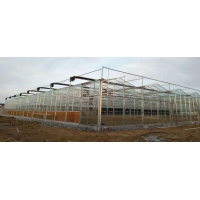 Wholesale Multi Span Modern Plant Construction Agricultural Greenhouse from china suppliers