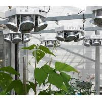 Best High Efficient Full Spectrum50W-250W LED Grow Light for Medical Plants Vegetable and Bloom Indoor Plant  MW wholesale