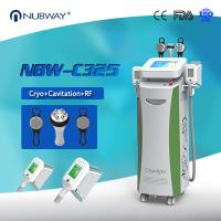 Newproduct best selling cryolipolysis slimming machine used for beauty clinic