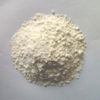 Wholesale Muscle Meal Replacements Plant Protein Powder Supplement Soybean Peptide Protein Powder from china suppliers
