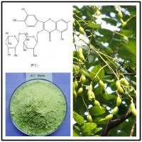 Wholesale sophora japonica extract rutin,sophora japonica rutin,rutin powder,natural rutin powder from china suppliers