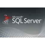 China Online Server License Key , Sql Server 2017 Enterprise License MS Full Language for sale