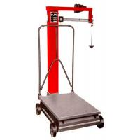 China weighing platform scale 300kg on sale