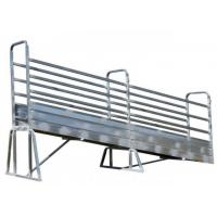 Wholesale Metal Cattle Loading Ramp Double Swing Access Gates Heavy Duty Ladder from china suppliers