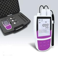 China Portable single parameter ion meter for sale