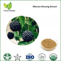 Wholesale Siberian Ginseng Extract,eleutheroside b,siberian ginseng root extract,eleutheroside from china suppliers