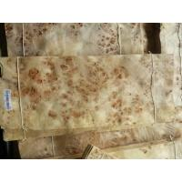 Wholesale Mappa Burls Wood Veneer from china suppliers