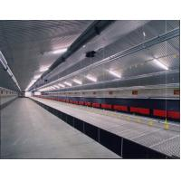 Wholesale Poultry drinker for broilers and layers from china suppliers