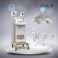 China Weight loss best cryolipolysis machine physical therapy equipment for sale on sale