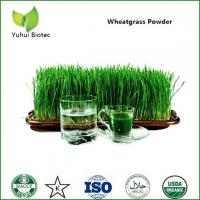 Wholesale wheatgrass powder,organic wheatgrass powder,wheat grass powder,wheatgrass extract from china suppliers
