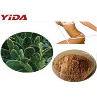 Wholesale Hoodia Gordonii Cactus Extract Weight Loss Steroids from china suppliers