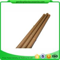 Wholesale Heavy Duty Bamboo Garden Stakes , Round Bamboo Stakes For Garden from china suppliers