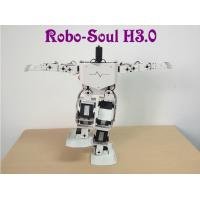 China Robotics equipment Large torque digital servo Support 17 DOF Humanoid robot on sale